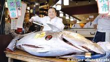 Japan Tokio | Erste Thunfisch Auktion im neuen Jahr: Kiyoshi Kimura kauft Fisch für 1.8 Millionen Dollar