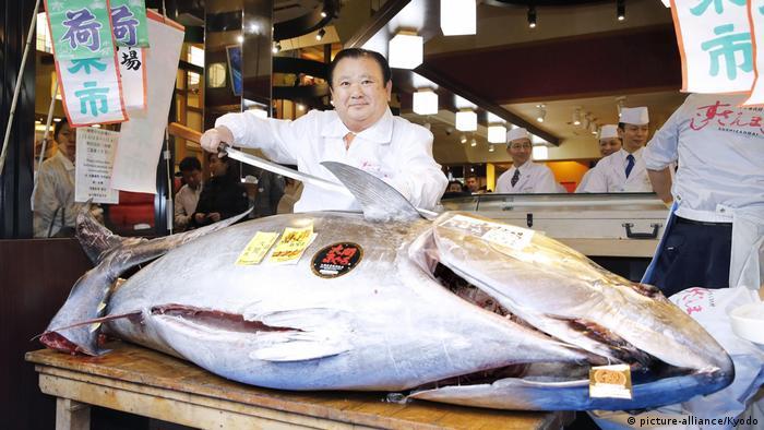 تعود كيوشي كيمورا على شراء أسماك التونة بمبالغ كبيرة.