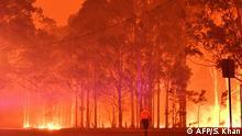 BG Waldbrände in Australien | Inferno