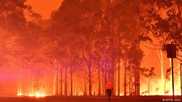 BG Waldbrände in Australien   Inferno (AFP/S. Khan)