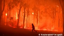 A firefighter is seen running in a burning forest