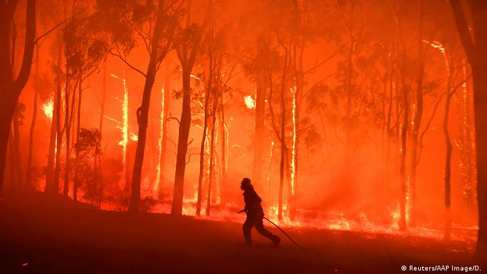 A firefighter runs through a completely burning forest in Australia.