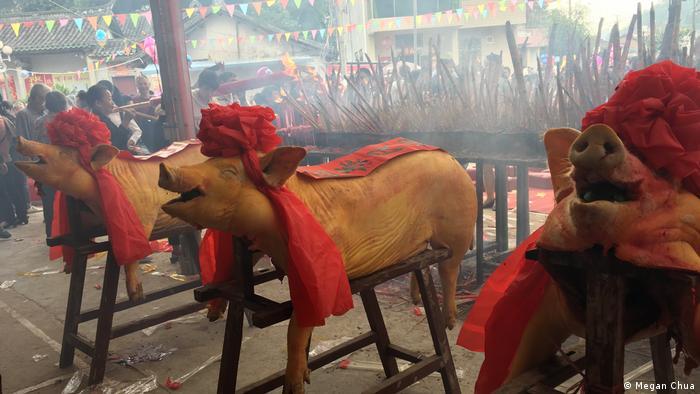 Decorated dead pigs (Megan Chua)