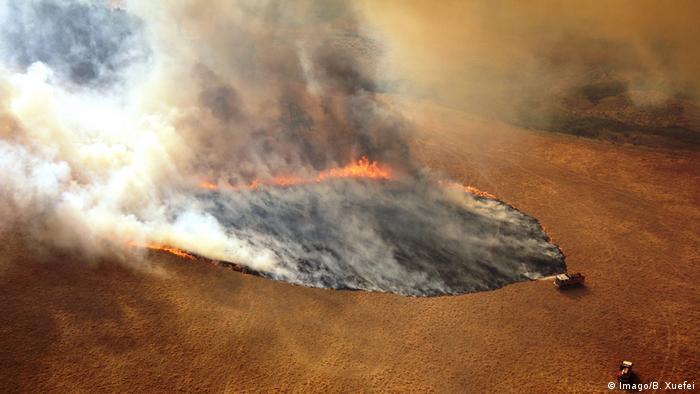 Los fuertes vientos conducen el fuego cada vez más profundamente en el monte. Es casi imposible extinguir los incendios en este punto.