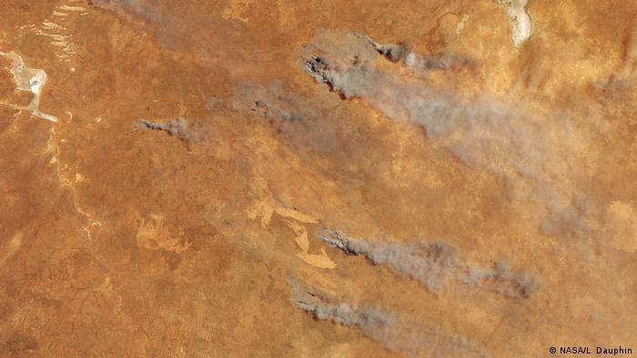 Docenas de incendios arrasan el paisaje australiano. Millones de animales y 25 personas han muerto hasta ahora.