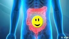 DW Fit und Gesund | Darmgesundheit