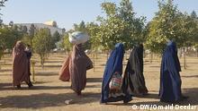 Afghanistan Nangarhar Frauen und Kinder pakistanischer IS-Kämpfer