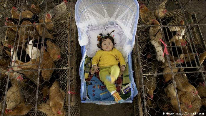 По пазарите в Китай човекът и животните са плътно един до друг