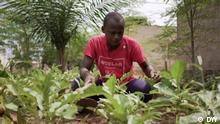 Transforming rubbish dumps into gardens in Togo Schlagwörter: Eco Africa, environment, Togo, Lome, food security, farming, African startups, Urbanattic, infrastructure