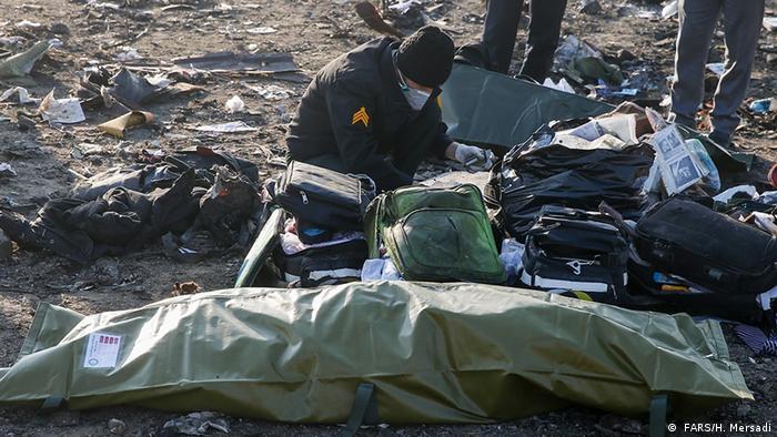 Iran | Flugzeugabsturz ( FARS/H. Mersadi)
