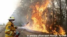 Australien Waldbrände | Feuerwehr