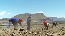 Sendung: Quinua real en Bolivia