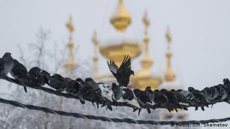 BdTD Russland Moskau | Tauben im Winter & Nowodewitschi-Kloster (Reuters/M. Shemetov)