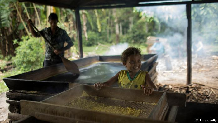 En todas las comunidades de la Resex Médio Juruá, la mandioca o yuca es un importante cultivo.