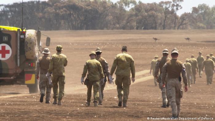 Солдаты собирают трупы животных, погибших во время пожара