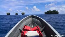 Global Ideas Solomon-Inseln Karettschildkröte