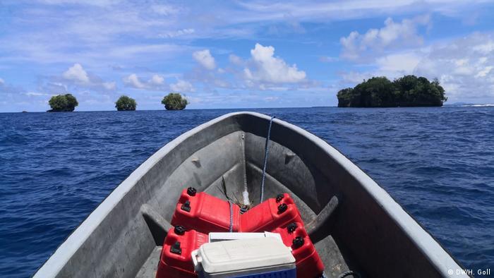 Global Ideas Solomon-Inseln Karettschildkröte (DW/H. Goll)