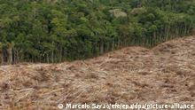 ARCHIV - Das undatierte Archivfoto zeigt die Abholzung des Regenwalds im Amazonasgebiet in Brasilien. Die Abholzung von Regenwaldflächen im Amazonas bringt den dort lebenden Einwohnern und Gemeinden nicht die erhoffte dauerhafte Verbesserung der Lebensbedingungen. Zu diesem Schluss kommt eine Studie, die 286 Gemeinden im brasilianischen Amazonas verglich und die in der neuesten Ausgabe der US-Fachzeitschrift «Science» (12. Juni 2009) veröffentlicht wird. EPA/MARCELO SAYAO (zu dpa-Korr Regenwald-Rodung bringt Gemeinden keinen Wohlstand vom 11.06.2009) +++(c) dpa - Bildfunk+++ |