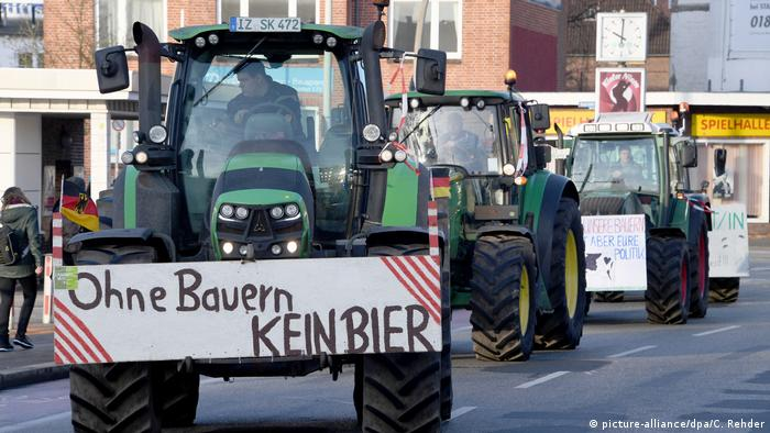 Farmers protest, Kiel, Germany (picture-alliance/dpa/C. Rehder)