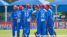 Cricket - 2020 ICC U19 World Cup - Südafrika v Afghanistan (picture-alliance/empics/BackpagePix)