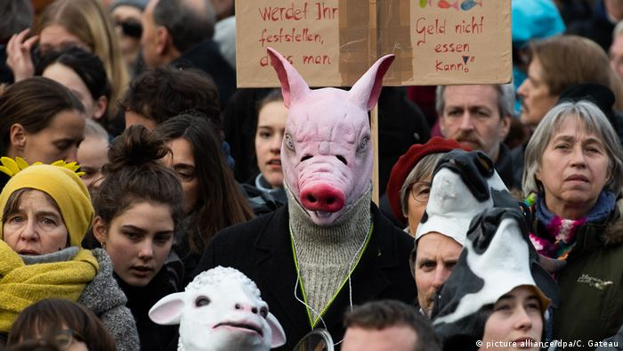A protester wear a pig mask