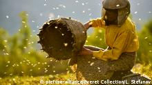 Film Honeyland | Land des Honigs
