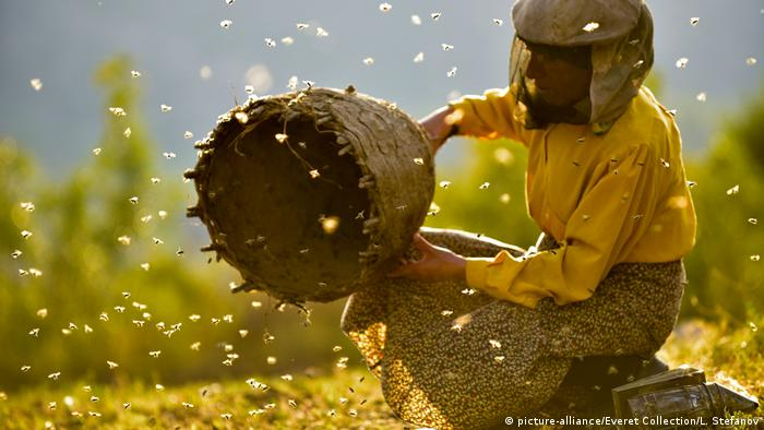 A still from the film Honeyland (picture-alliance/Everet Collection/L. Stefanov)