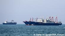 Cargoschiffe in der Straße von Hormus