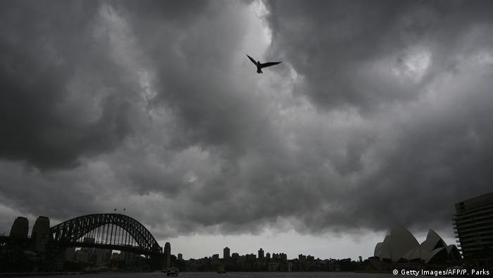 A bird takes flight in a very stormy sky over Sydney