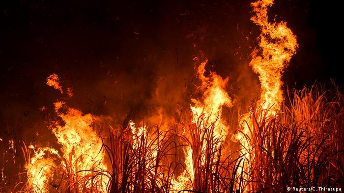 تلوث الهواء ليس مصدره الحرائق فقط، بل أيضا النفايات ووساخة المدن ومخلفات الصناعة لاسيما الكيميائية منها
