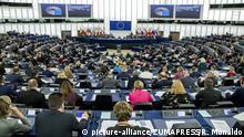 26-11-2019 Strasbourg (France).Plenary sitting of the European Parliament (Credit Image: © Roberto Monaldo/LaPresse via ZUMA Press |