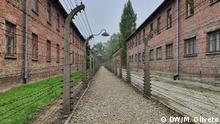 Auschwitz Fotoreportage 75 Jahre nach der Befreiung