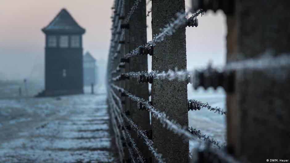 Рассказ бывшей узницы о медицинских опытах над детьми в Освенциме ...