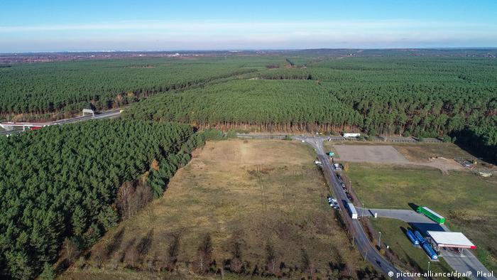 Для гигафабрики Tesla были вырублены десятки гектаров леса