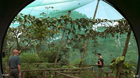 Costa Rica als Ökotourismus-Paradies Flash-Galerie