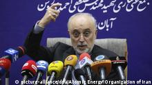 Iran Atomenergieorganisation Ali Akbar Salehi
