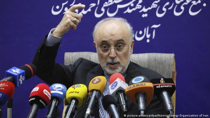 علی اکبر صالحی، رئیس آژانس اتمی ایران