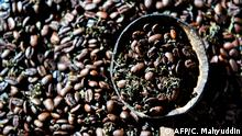 This photo taken on December 10, 2019 shows coffee beans with marijuana in Banda Aceh, Aceh province. - The contraband mixture of cannabis and coffee is a hit with locals and buyers in other parts of the Southeast Asian archipelago, who pay 1.0 million rupiah (75 USD) for a kilo of it. (Photo by CHAIDEER MAHYUDDIN / AFP) / TO GO WITH Indonesia-drug-culture-crime,FOCUS by Haeril HALIM