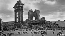DW Dokumentationen Mythos Dresden