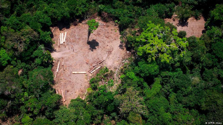 Europa aperta o cerco contra produtos brasileiros | DW | 20.06.2020