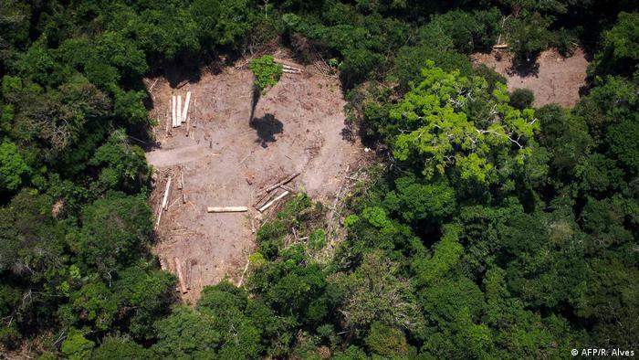 Foto de arquivo tirada em 13 de outubro de 2014 mostrando uma visão aérea de uma área de derrubada ilegal na floresta amazônica