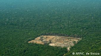 Brasilien Symbolbild illegale Brandtrodung (AFP/C. de Souza)