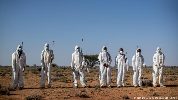 Pesticide sprayers in white protection suits and masks stand in line (picture-alliance/dpa/AP/B. Curtis)