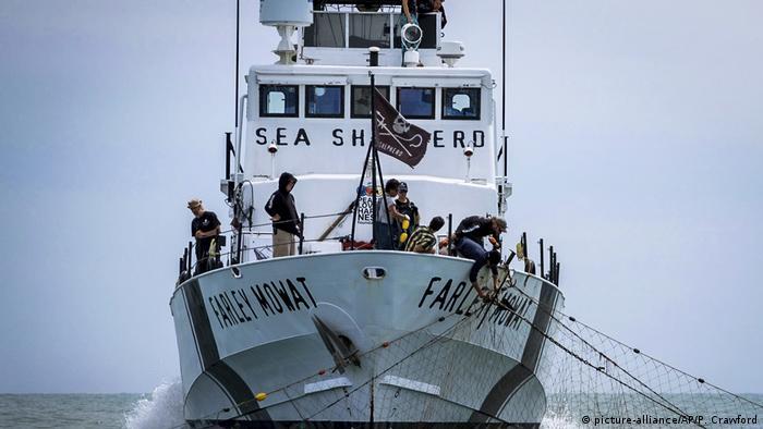Barco de Sea Shepherd