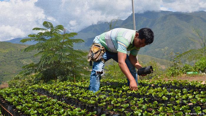 Bolivien Freiwilligendienst