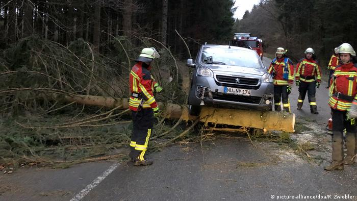 A car stuck on a tree in a road, sounded by firemen