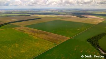 Vista aérea de campos de plantação