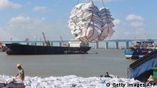 China Nantong-Hafen 2019 | Import von Sojabohnen aus Brasilien