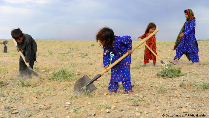 Afghanistan | Kinder arbeiten in einem Feld