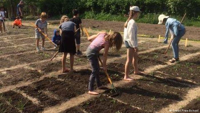 Students at the Green Free School garden in Copenhagen